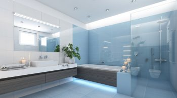 Shower Screen and Mirror